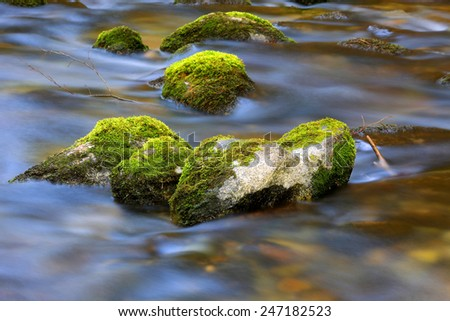 mountain brook with mossy stones - stock photo
