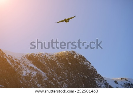 mountain  covered by white snow - stock photo