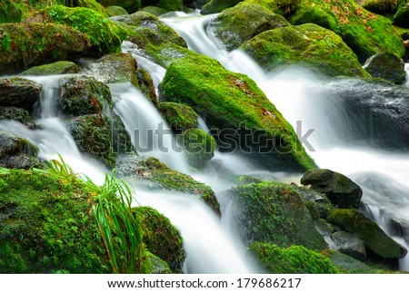 Mountain creek cascade with fresh green moss on the stones, long exposure for soft water look - stock photo