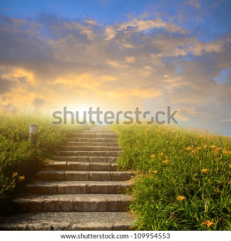Mountain flower meadow with Ladder - stock photo