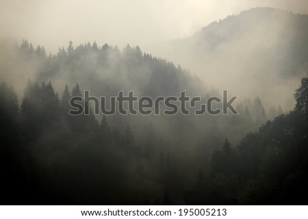 Mountain Fog - stock photo