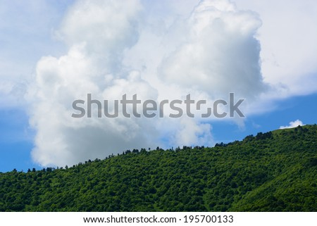 Mountain forest and cloudy blue sky - stock photo