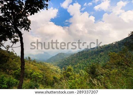 mountain forest and raining fog blue sky - stock photo