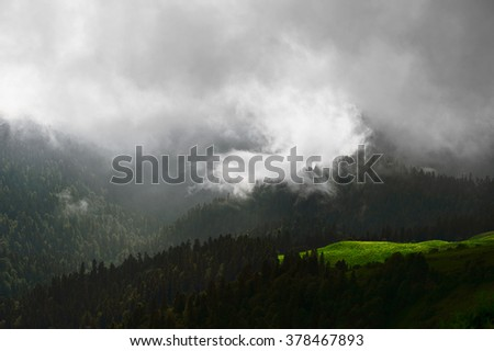 Mountain forest. Beautiful mountain forest landscape. Mountain forest before storm. Amazing mountain forest. Mountain forest in clouds. Green mountain forest. Mountain forest background. Sochi, Russia - stock photo