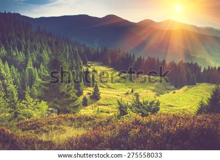Mountain forest landscape under evening sky with clouds in sunlight. Filtered image: Soft and vintage effect.  - stock photo