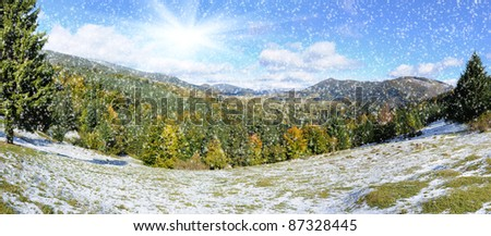 Mountain forest with first winter snow - stock photo