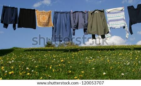 Mountain freshness - stock photo