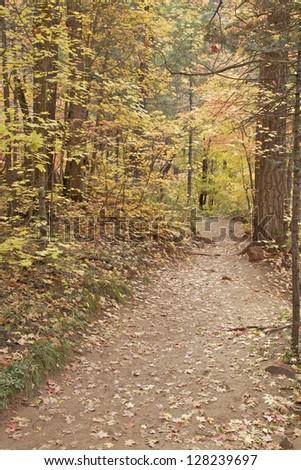 Mountain Hiking Trail in Fall - stock photo