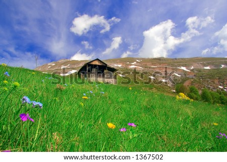 Mountain hut and a meadow - stock photo