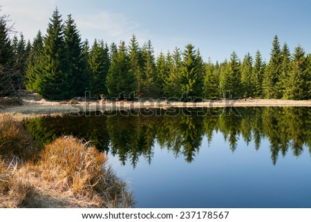 mountain lake in germany - stock photo