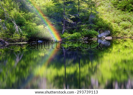 Mountain Lake in the wild taiga during sunset. Old wood on a background of magic and fairy tale, according to legend, the water, water and mermaids live, people do not have. - stock photo
