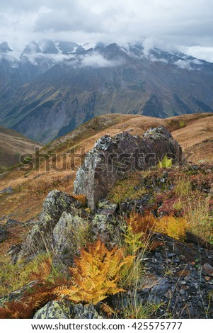 Mountain landscape. Cloudy autumn day. Beautiful ferns and rocks. Caucasus, Georgia, Zemo Svaneti - stock photo