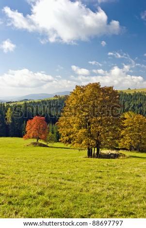 mountain landscape in autumn colors - stock photo