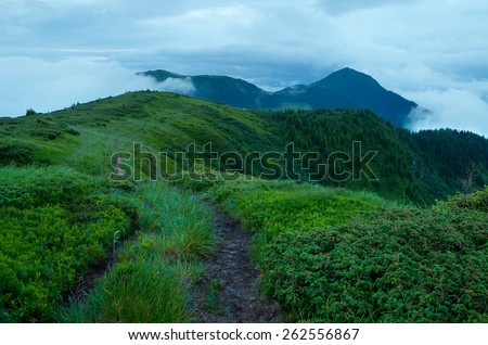 Mountain landscape. Summer evening in cloudy weather. Lush green grass - stock photo
