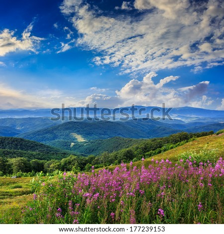 mountain landscape. valley with stones on the hillside. forest on the mountain under the morning light falls on a clearing at the top of the hill. - stock photo