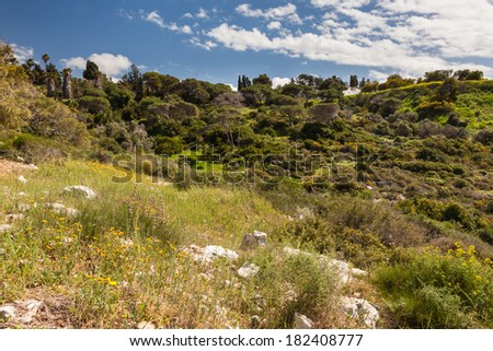 Mountain landscape with blue cloudy sky in spring, Haifa, Israel - stock photo