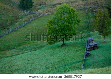 Mountain landscape with green trees, green grass and wooden fence - stock photo