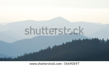 Mountain landscape with swifting eagle in the centre of view - stock photo
