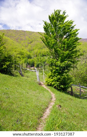 Mountain landscape with trees, small path and wooden fences - stock photo