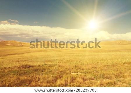 mountain pasture - stock photo