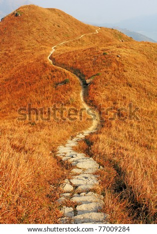 mountain path and yellow grass - stock photo