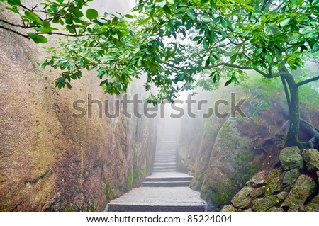 Mountain path surrounded by a green tree in Hunagshan,China - stock photo