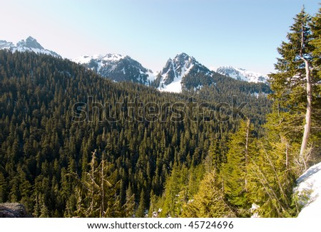 mountain peaks, pine forest and snow - stock photo