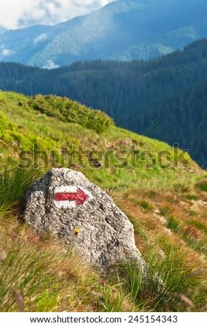 mountain pointer on the stone - stock photo