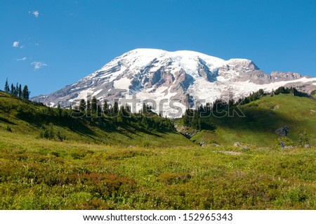 Mountain Rainier, Paradise Valley, Skyline Trail - stock photo