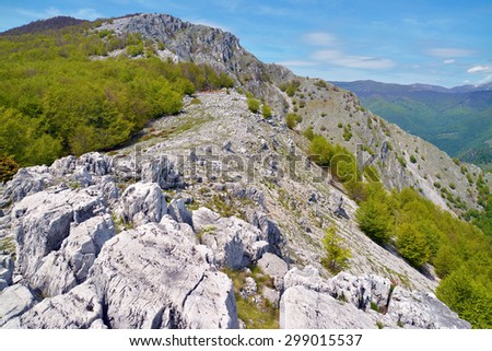 mountain ridge in the carpathians - stock photo