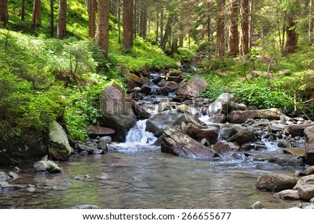 mountain river and coniferous forest - stock photo