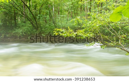 Mountain river flowing on stones in the forest. Mountain river pass through mountain forest. Mountain river in forest. Fast river in mountains. Rocky mountain river flow. Beautiful river in forest. - stock photo