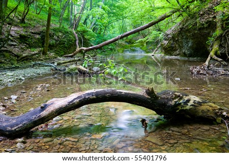 Mountain river in green forest - stock photo