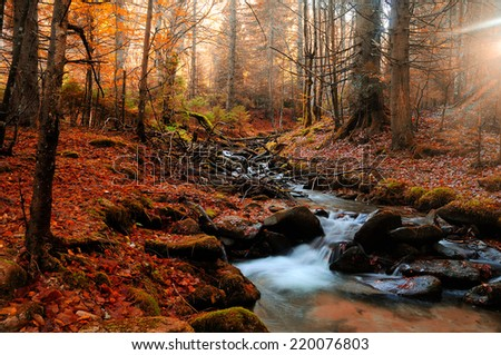 Mountain river in late autumn. Indian summer applied. - stock photo