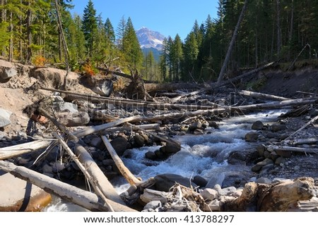 Mountain river in the forest with logs with Mount Hood in the background. View from trail to Ramona Falls. Oregon, North America Pacific Northwest. - stock photo