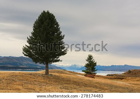 Mountain scenery at Lake Pukaki, New Zealand - stock photo