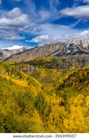 Mountain sides filled with fall color of changing yellow Aspen trees and pine trees on sunny autumn morning with blue sky and white puffy clouds - stock photo