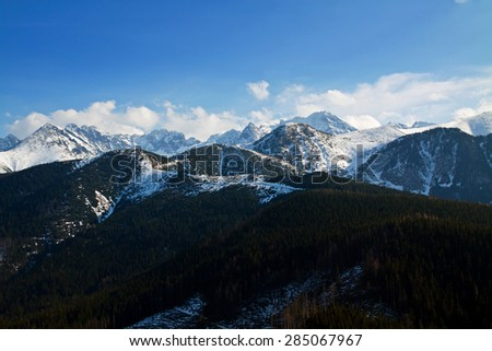 Mountain snowy landscape with forest in Zakopane - stock photo