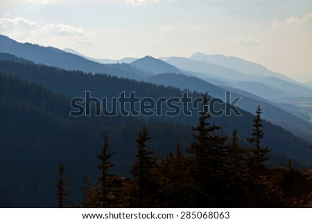 Mountain snowy landscape with pine forest in Zakopane - stock photo