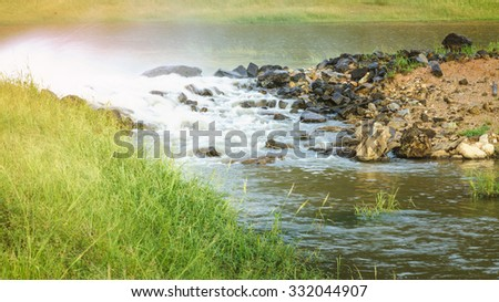 Mountain stream in green forest - stock photo