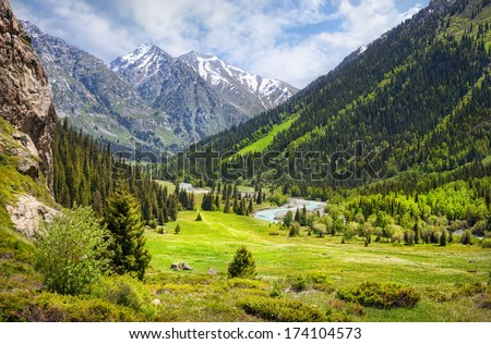 Mountain valley with green trees and river in Dzungarian Alatau, Kazakhstan, Central Asia - stock photo