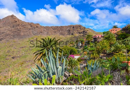Mountain village Masca in tropical landscape of Tenerife, Canary Islands, Spain - stock photo