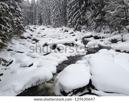Mountain Vydra river - stock photo