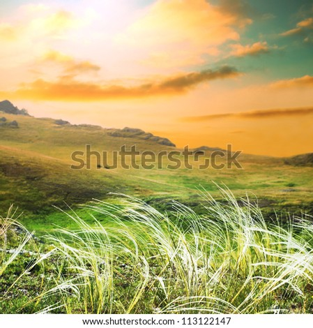 mountains meadow at sunrise - stock photo