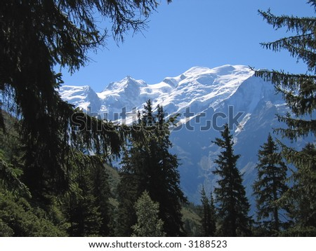 Mountains through fir trees - Aiguillette des Houches - Brevent - France - The Alps. - stock photo