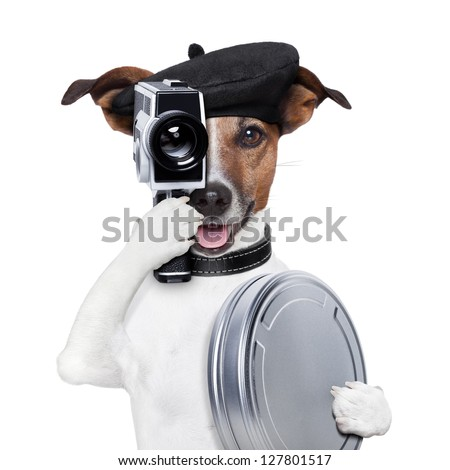 movie director dog with a vintage camera - stock photo