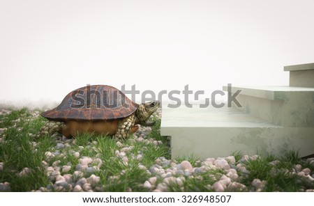 moving turtle wants to climb on the stairs concept background - stock photo