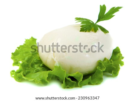 mozzarella cheese on green leaf - stock photo