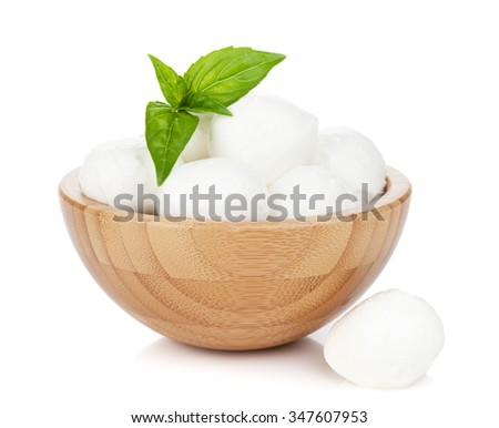 Mozzarella cheese with basil. Isolated on white background - stock photo