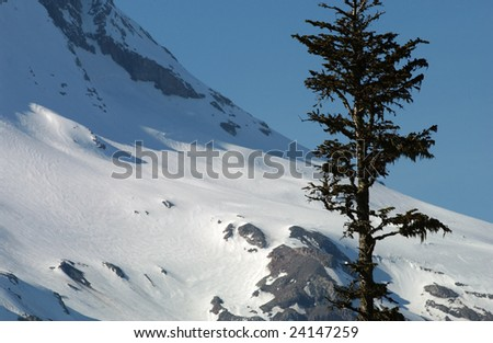Mt Hood, Oregon, USA - stock photo